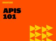 API 101